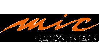 mic-basketball